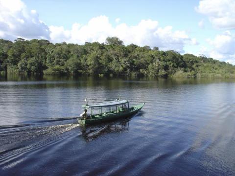 Brazilian Amazon GEO.jpg