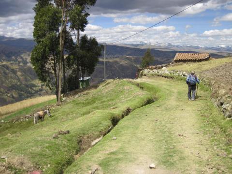DGHI rural farmer Peru.jpg